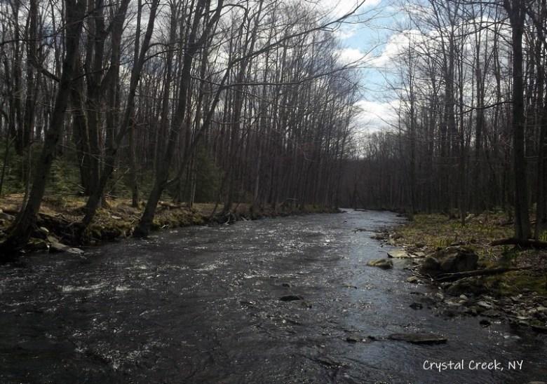 Daniele Beaulieu SU19 - Adirondacks Tenkara Playground - Crystal Creek