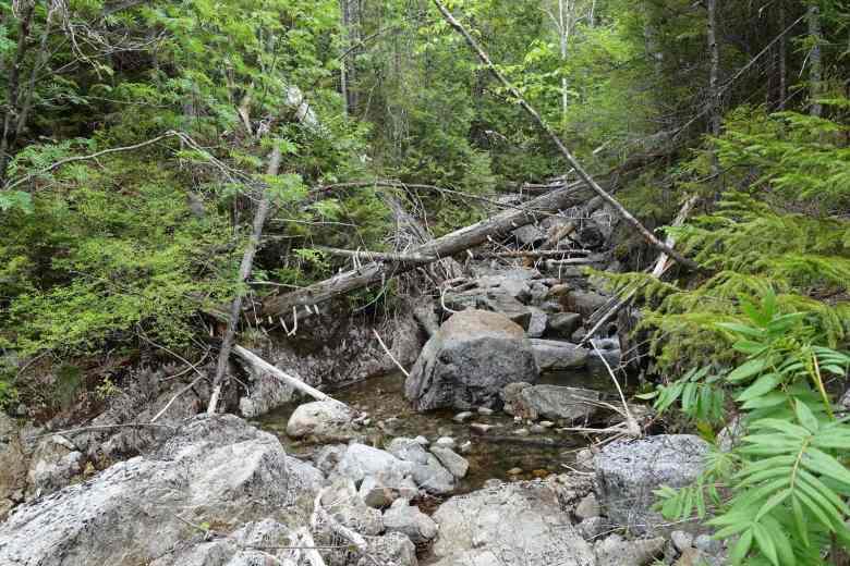 Tenkara Adirondacks New York - Adam Klagsbrun - Hidden waters