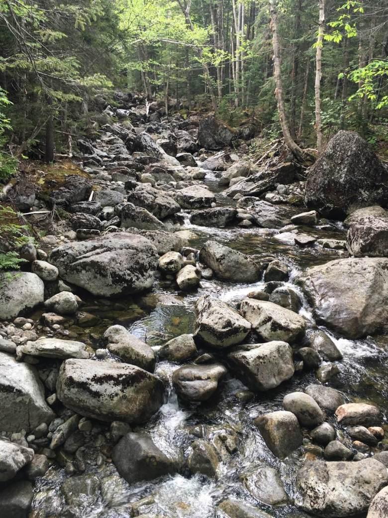 Tenkara Adirondacks New York - Adam Klagsbrun - pocket water