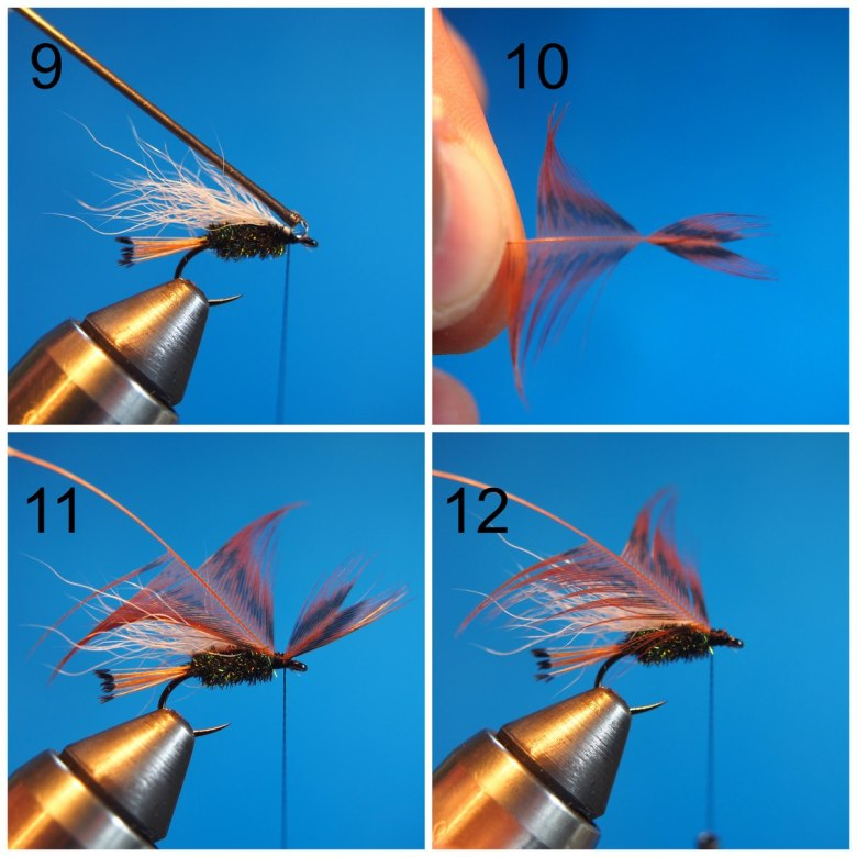 Anthony Naples - Pass Lake Wet Fly - Steps 9-12