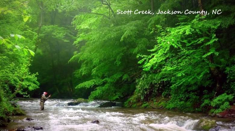 Jason Sparks - Too Tight for Tenkara - Scott Creek