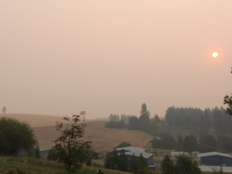 Diane Kelly-Riley - Fire Season Idaho - Smoky View