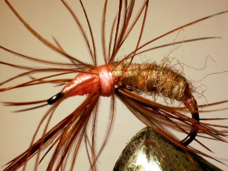 Jason Sparks Gnarly Fly