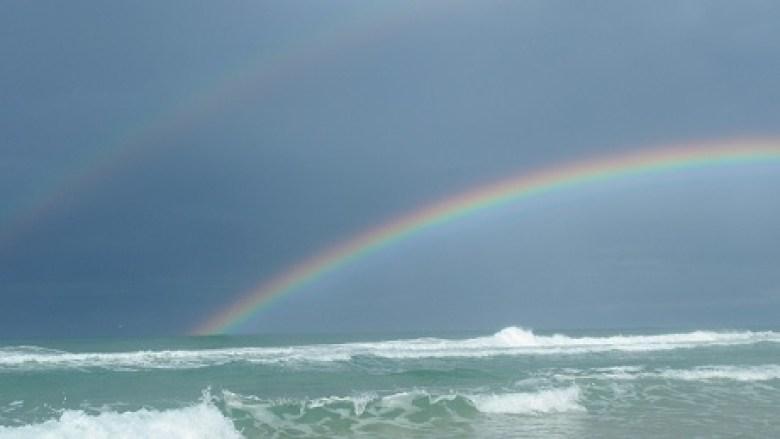 Dart Surf Fish - Tenkara Angler - Dean Price - Rainbow