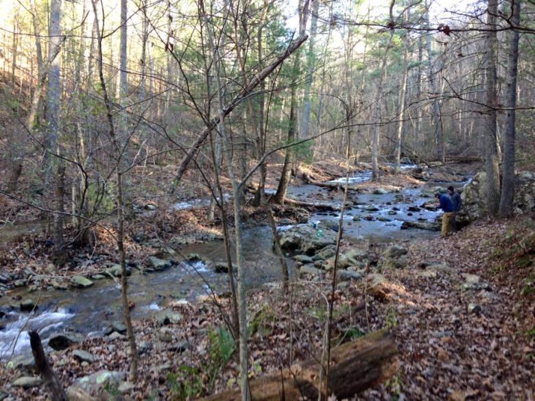 Fall Shenandoah Mountains - Tenkara Angler - Rob Lepczyk - Unnamed Stream