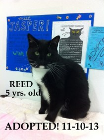 Reed - Adopted 11-10-13