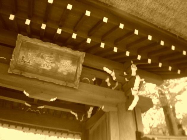 神代植物園&深大寺 (34)