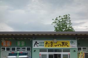 卵の駅 (6)