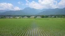 安曇野風景写真 twitter@tenmasawa (140)