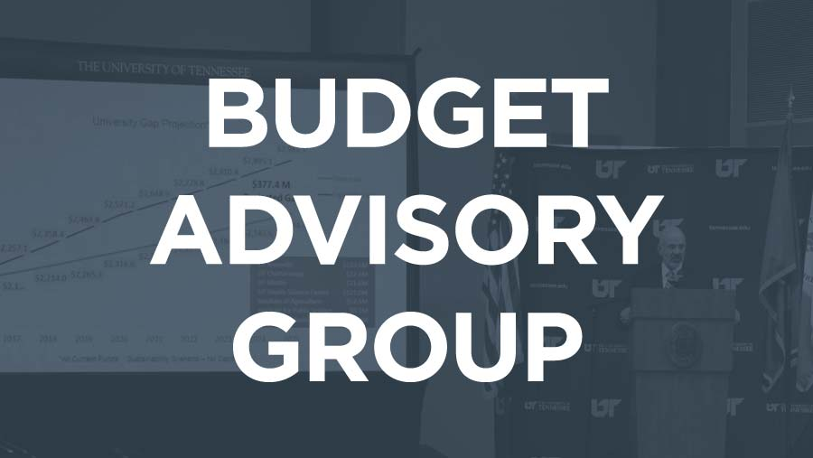 Budget Advisory Group