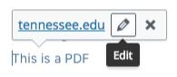 WordPress edits interface