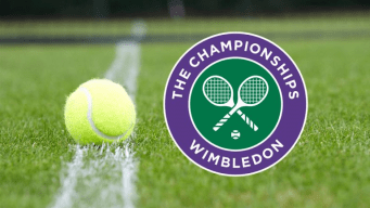 Wimbledon 2017 - singles