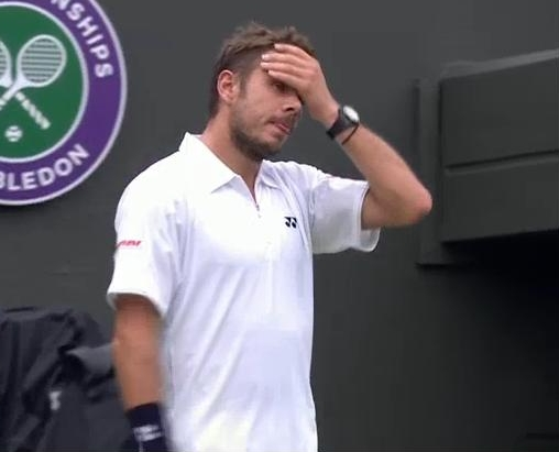 Stan Wawtrinka face palm Wimbledon Round one 2013 pictures photos