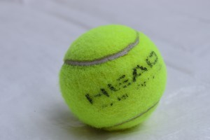 Head Championship Tennis Ball