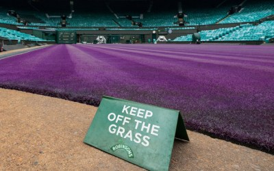 Wimbledon will have 'crowds'