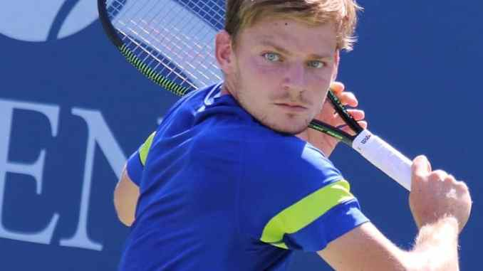 Which Racquet Does David Goffin Racquet Use?