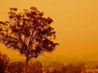 Bushfire effect on Australian Open