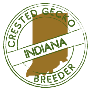 Crested Gecko Breeders in Indiana