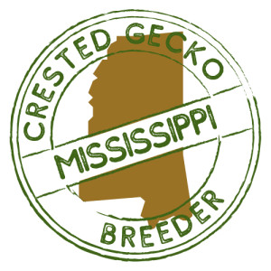 Crested Gecko Breeders in Mississippi