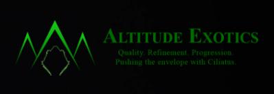 altitude exotics reviews