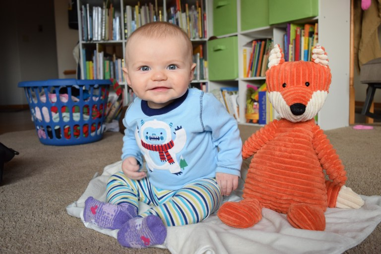 Baby sits up stuffed fox toy