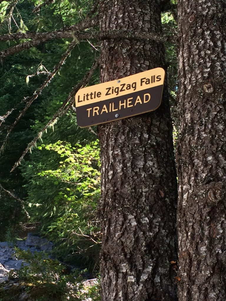Just a half-mile from the parking area, you'll hike to Little Zigzag falls: a hike perfect for kids & families on Mt Hood! Ten Thousand Hour Mama