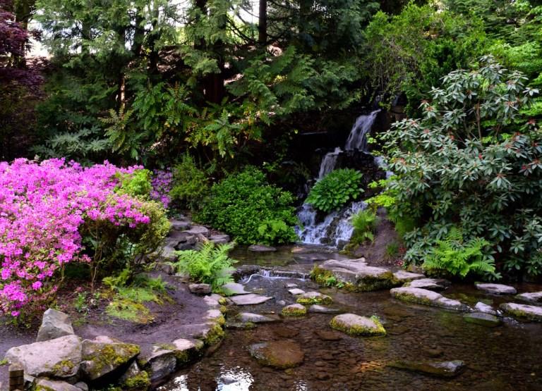 Family kids travel Portland Oregon rhododendron garden hike - Ten Thousand Hour Mama
