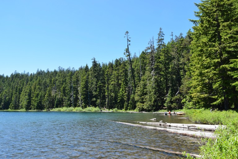 This family friendly hike on Mt. Hood to Twin Lakes is perfect for travel outside Portland, Oregon! Ten Thousand Hour Mama