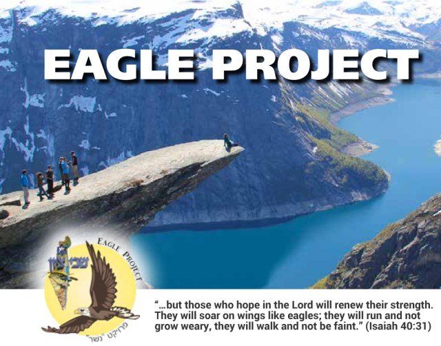 eagle-project01