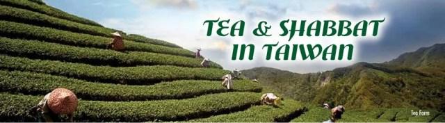 tea-farm-title