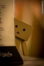 danbo behind menu