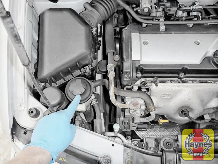 Checking Steering Fluid