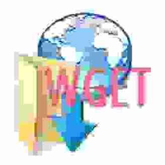 Cómo descargar un sitio web completo con Wget 1