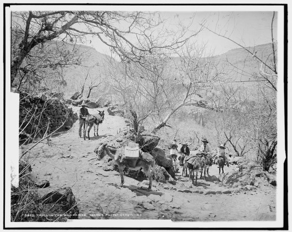 Antiguo transporte de Tequila Mexico