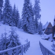 Мороз и солнце день чудесный....