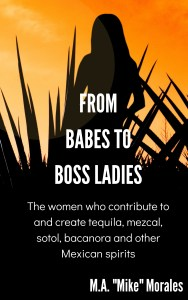 Book Cover: From Babes to Boss Ladies