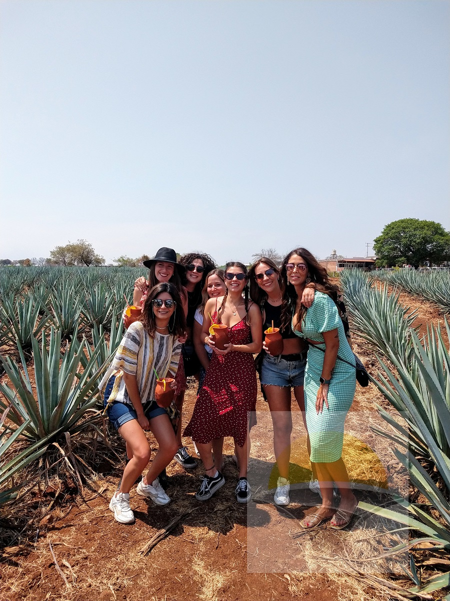Tour a Tequila Jalisco