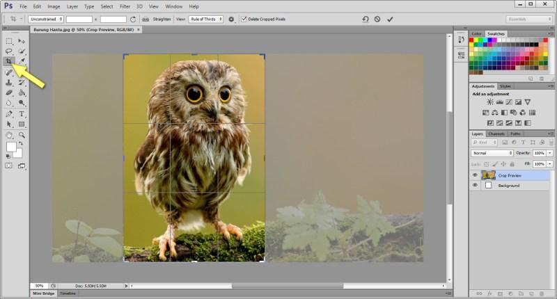 Cara Crop Foto Dengan Adobe Photoshop