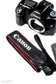 canon_5D-7210-22
