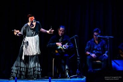 morena_flamenco-9253