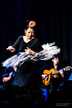 morena_flamenco-9335