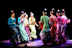 morena_flamenco-9439