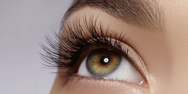 Inilah Berbagai Macam Bentuk Mata yang Wajib Kamu Ketahui