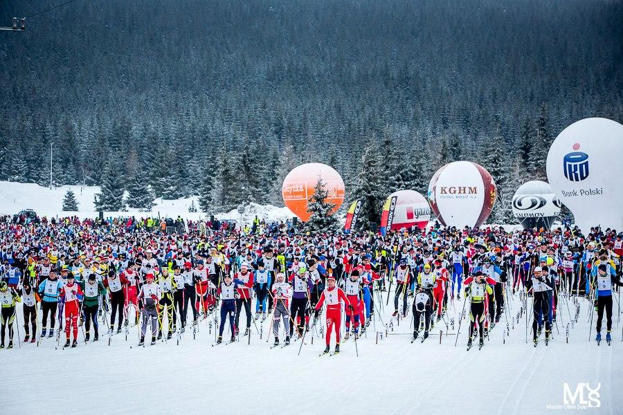 bieg piastow 2013