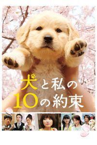 10 Promises to My Dog (2008)
