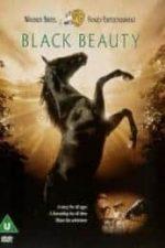 Nonton Film Black Beauty (1994) Subtitle Indonesia Streaming Movie Download