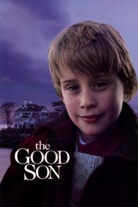The Good Son (1993)