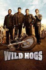 Nonton Film Wild Hogs (2007) Subtitle Indonesia Streaming Movie Download