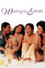 Nonton Film Waiting to Exhale (1995) Subtitle Indonesia Streaming Movie Download