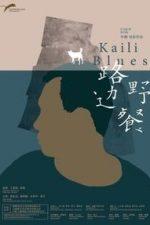Nonton Film Kaili Blues (2016) Subtitle Indonesia Streaming Movie Download